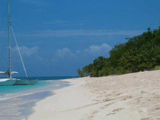 Cottages By The Sea : Buck Island - not crowded!