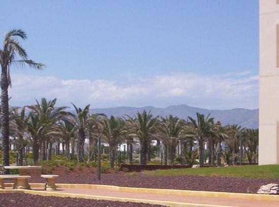 Cabogata Mar Garden Hotel Club & Spa: grounds