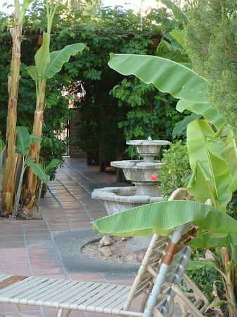 Hotel California: Another walkway by another fountain.