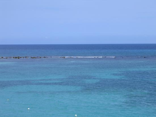 Jamaica Inn : Reef off Deck
