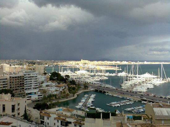 Catalonia Majorica Hotel : Balcony view 1