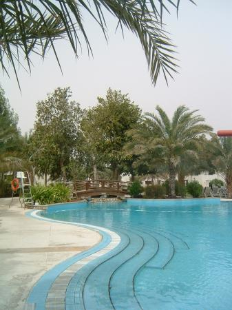 Hilton Al Ain: swimming pool
