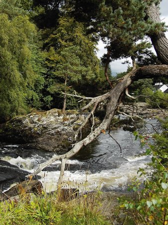 Schottisches Hochland, UK: the Falls of Dochart Killin
