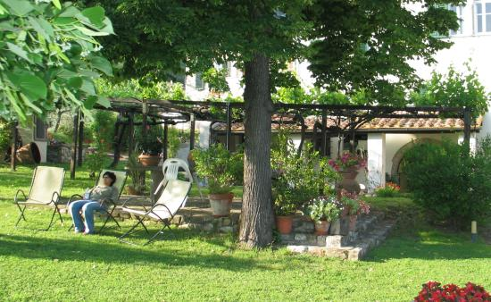 IL Torrino Bed and Breakfast : garden il torrino