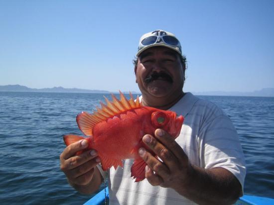 Coco Cabanas Loreto: The infamous Pedro the fisherman