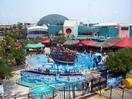 Water Park For Kids At The Aquarium Picture Of The