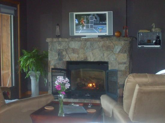 Beaver Lakefront Cabins: Sitting area and fireplace