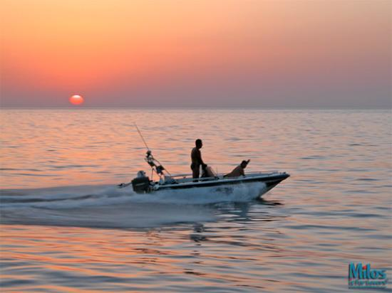 Milos by, Grækenland: Milos - Speedboat against sunset
