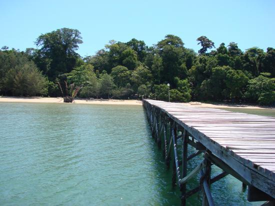 Borneo Survivor Resort