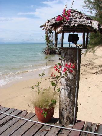 Borneo Survivor Resort: Pier and beach