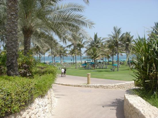 JA Jebel Ali Beach Hotel: Garden View