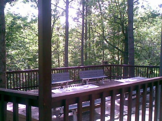 Ozarka Lodge: View from our room