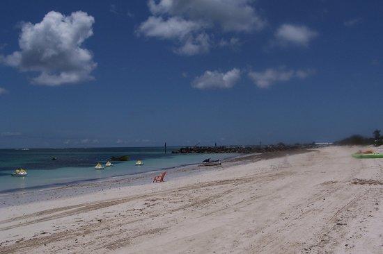 Discovery Cruise Bahamas : Beach at the resort