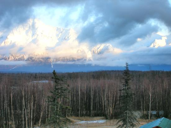 Alaska's Harvest B&B: the view from our rooms...Bear's Den and Creekside