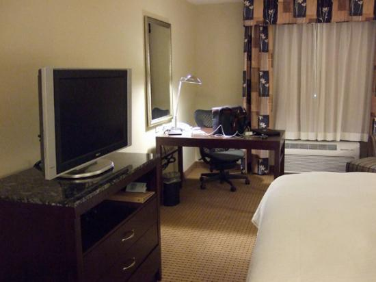 Hilton Garden Inn Jacksonville Orange Park: flat screen tv and desk area
