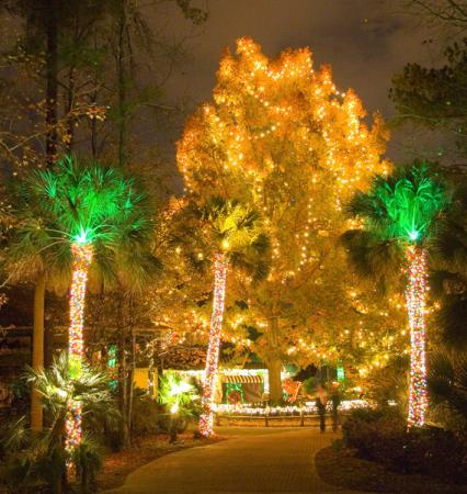 Lights Before Christmas - Picture of Riverbanks Zoo and Botanical ...