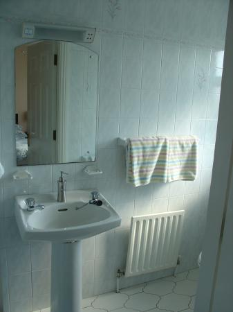 Carrigane House Bed and Breakfast : clean bathroom