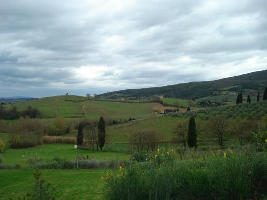 Hotel Villa Ducci: View of countryside from Villa Ducci