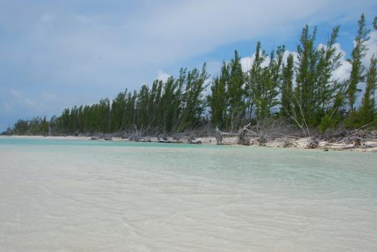 Lucayan National Park, Grand Bahama Island: Gold Rock Beach