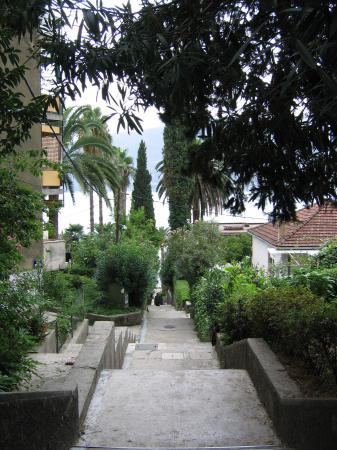 Hotel Perla: Stairs of Herceg Novi