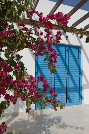 Theanan Seaview Villas: villa1