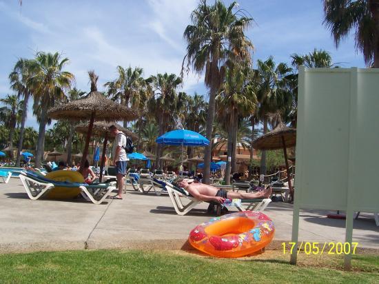 Protur Bonaire Aparthotel: Sunbathing area