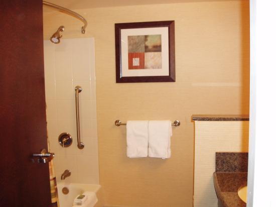 Courtyard Lake Placid: Shower