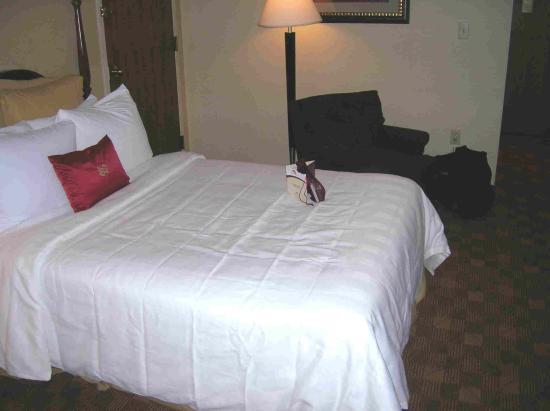 Crowne Plaza Southbury: Nice new bedding
