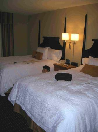 Hampton Inn & Suites Mobile Providence Park/Airport : New room!