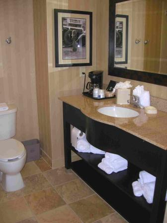 Hampton Inn & Suites Mobile Providence Park/Airport : Beautiful Bathroom
