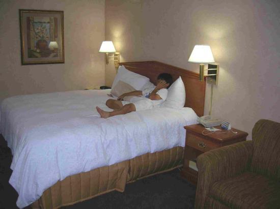 Hampton Inn Columbus Dublin: Nice Room