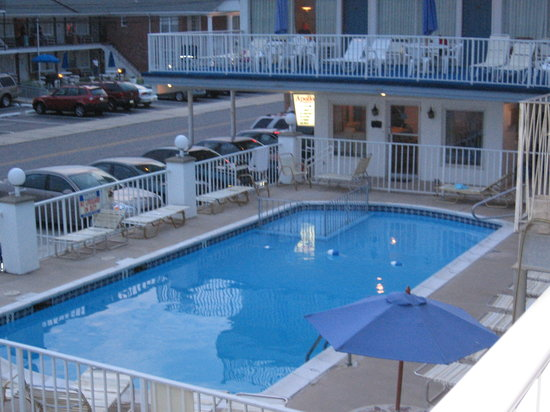 Apollo Resort Motel: The pool area