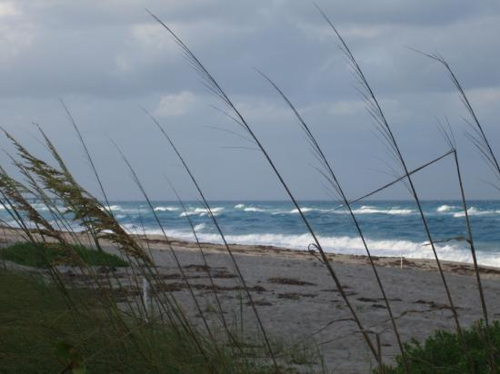 Holiday Inn Express North Palm Beach - Oceanview: Juno Beach