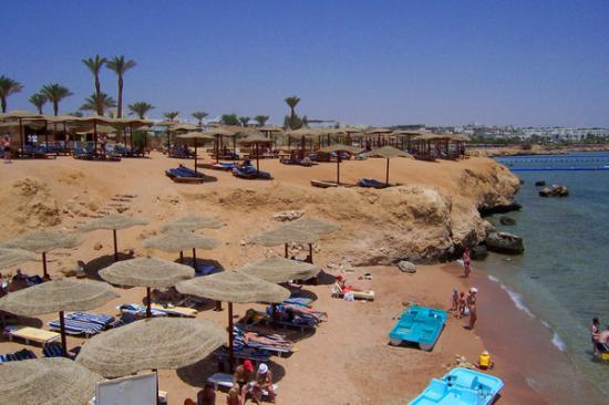 Royal Paradise Beach Resort: Beeach area