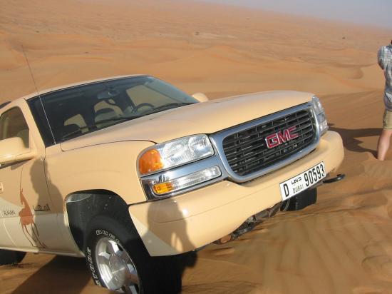 منتجع المها الصحراوي: safari