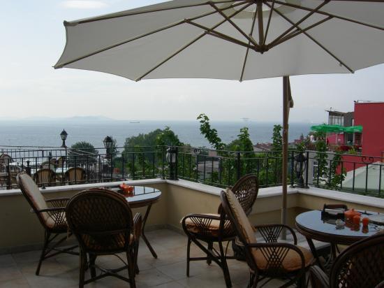 Hotel Alp: Dachterrasse