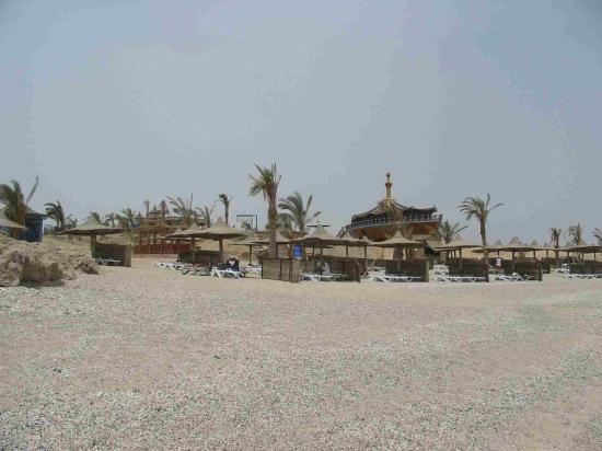 Dreams Beach Marsa Alam : Beach