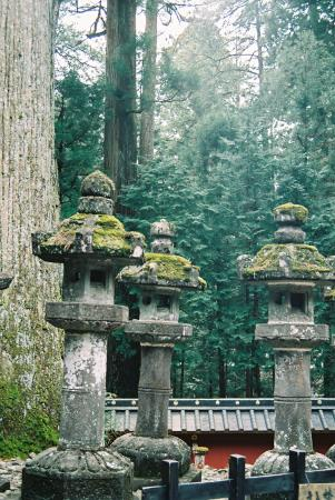 Toshugu Shrine - Photo de Nikko, Tochigi Prefecture - TripAdvisor