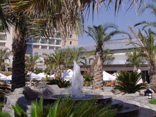 皇家翼酒店照片