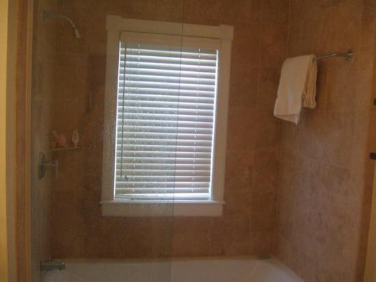 Villa Renaissance: Shower