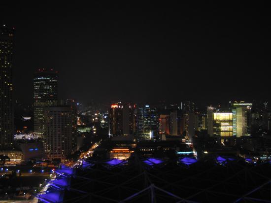 Pan Pacific Singapore: Vista nocturna desde la habitación