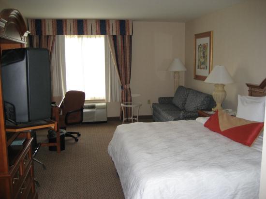 Hilton Garden Inn Milwaukee Park Place: King Room W/ Sofa Bed