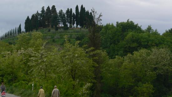 The hill on which Montorio is seated