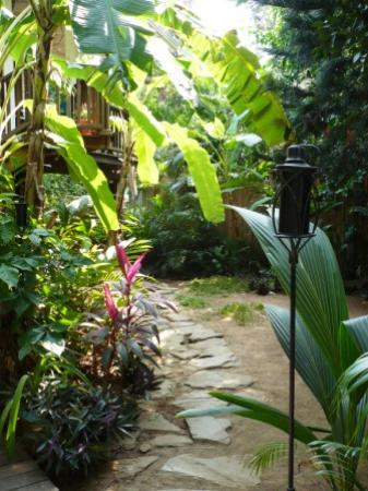 The Lily Pond House Hotel: Walkway at Lily Pond