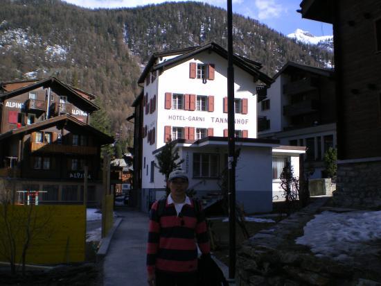 Hotel Garni Tannenhof : Hotel's front entrance