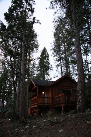 Evergreen Lodge at Yosemite: Our cabin at dusk walking back from parking lot