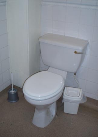 The Oxnoble: toilet
