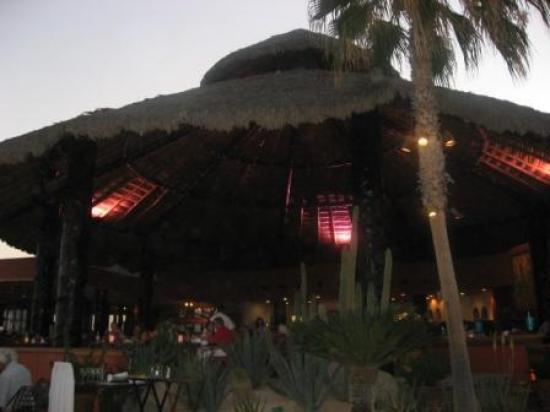 Sheraton Grand Los Cabos Hacienda del Mar: Pitahayas