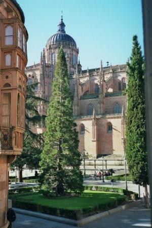 Hostal Catedral: Outside the Window
