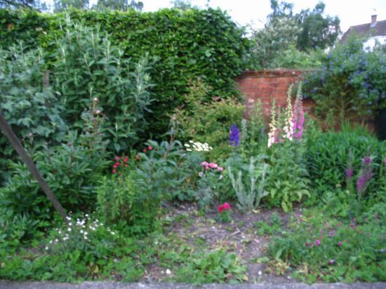 Bantry: Cheryl's Flower Garden
